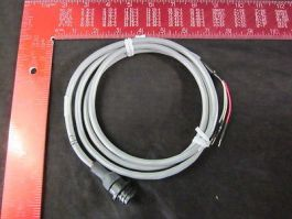 CAT 551013940 CABLE FROM DCE CONTROLLER TO GAS MODULE